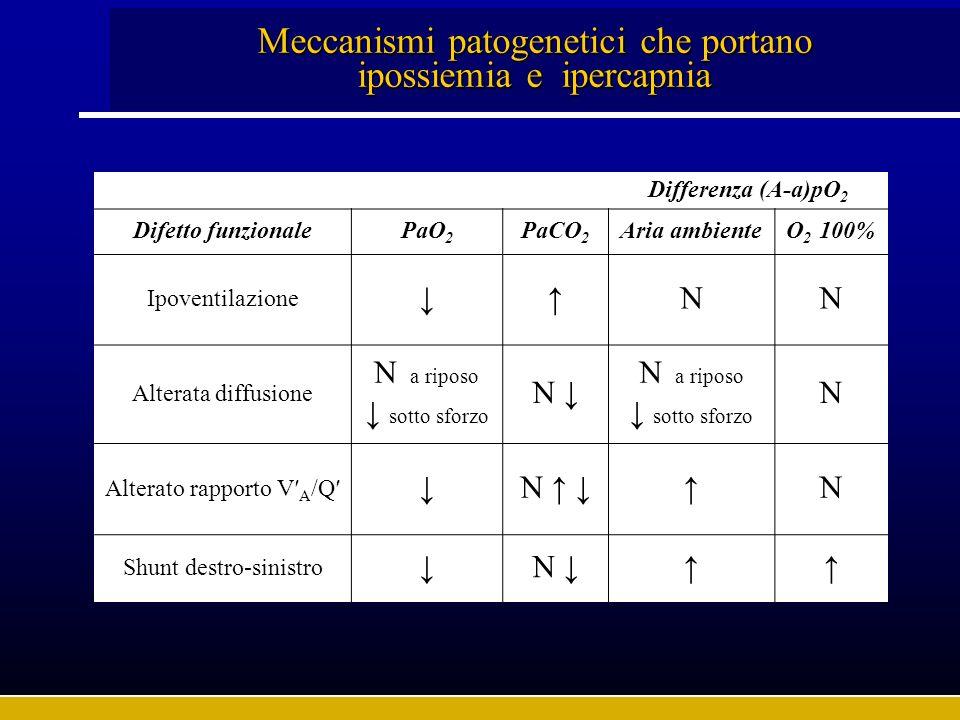 Meccanismi patogenetici che portano ipossiemia e ipercapnia Differenza (A-a)pO 2 Difetto funzionalePaO 2 PaCO 2 Aria ambienteO 2 100% Ipoventilazione