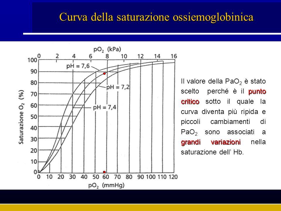 Curva della saturazione ossiemoglobinica punto critico grandi variazioni Il valore della PaO 2 è stato scelto perché è il punto critico sotto il quale
