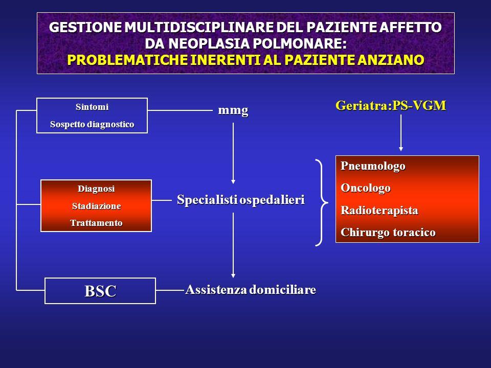 GESTIONE MULTIDISCIPLINARE DEL PAZIENTE AFFETTO DA NEOPLASIA POLMONARE: PROBLEMATICHE INERENTI AL PAZIENTE ANZIANO mmg Specialisti ospedalieri Assiste