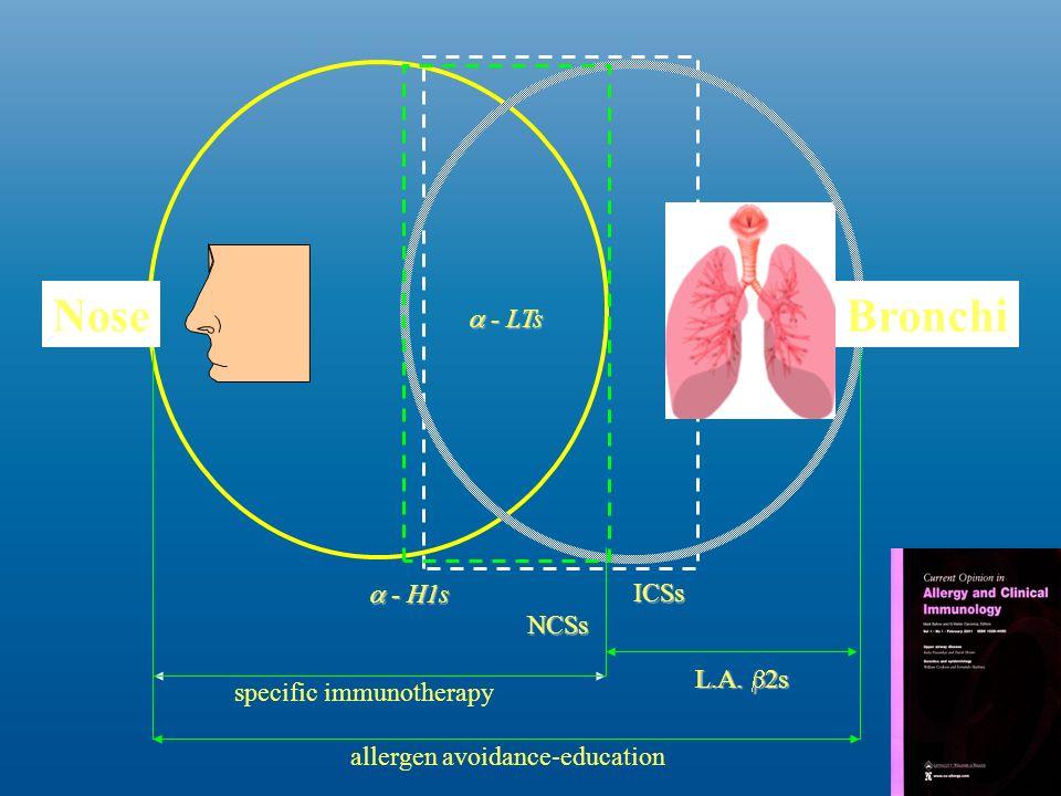 Le linee guida ARIA Impatto della rinite sullasma - Il trattamento della sindrome rinite/asma Il trattamento dellasma dovrebbe seguire le linee-guida della Global Initiative for Asthma Alcuni trattamenti sono efficaci sia nella rinite che nelasma (es.