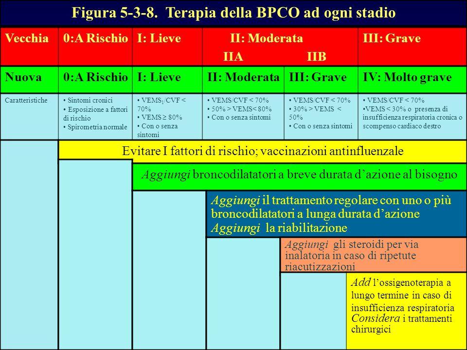 Vecchia0:A RischioI: Lieve II: Moderata IIA IIB III: Grave Nuova0:A RischioI: LieveII: ModerataIII: GraveIV: Molto grave Figura 5-3-8. Terapia della B