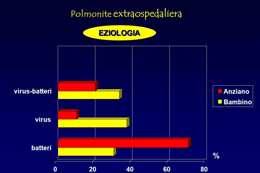 Coxiella burnetii (2%) Non identificati (24.5%) Streptococcus pneumoniae (28%) Chlamydia pneumoniae (12%) Virus (8%) Mycoplasma pneumoniae (8%) Haemophilus.influenzae (4%) Legionella spp (5%) Gram-,enterobatteri (3%) Chlamydia psittaci(2%) Staphylococcus aureus (2%) Polmonite extraospedalieraEZIOLOGIA