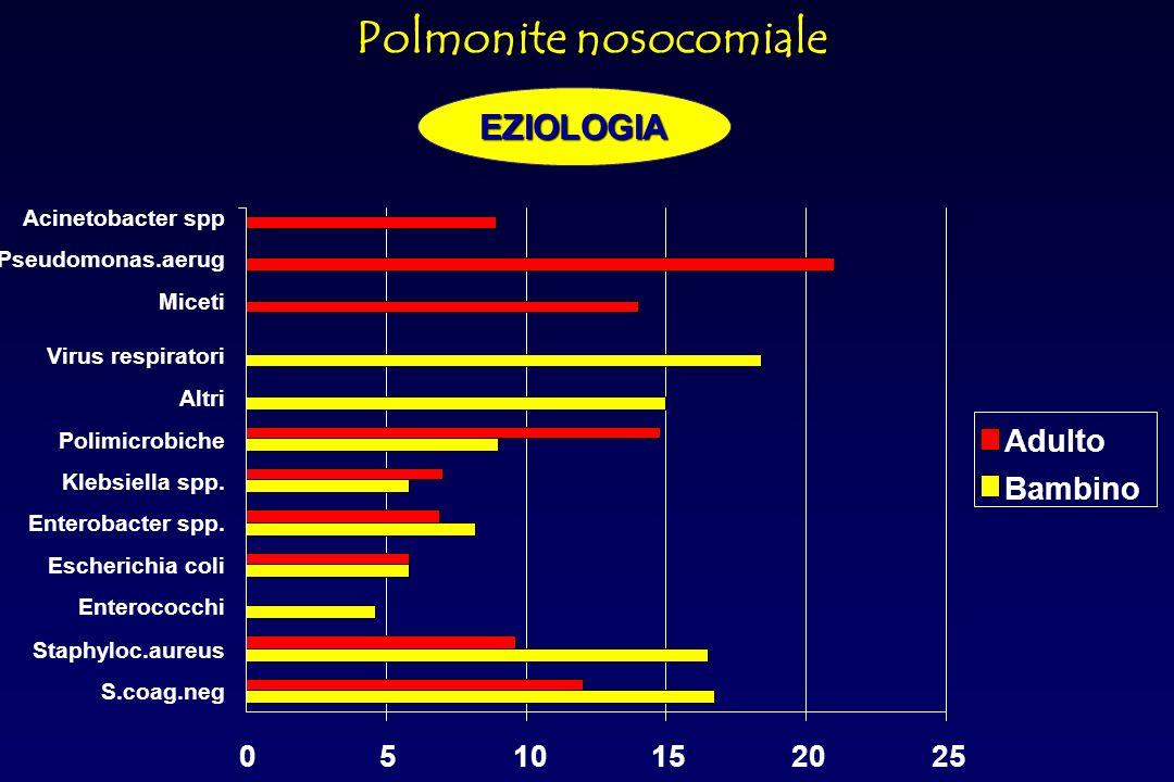 Adulto Bambino 01020304050 infezioni urinarie infezioni chirurgiche polmoniti sepsi altre % Polmonite nosocomiale Distribuzione delle infezioni nosocomiali per apparato in rapporto alletà EPIDEMIOLOGIA