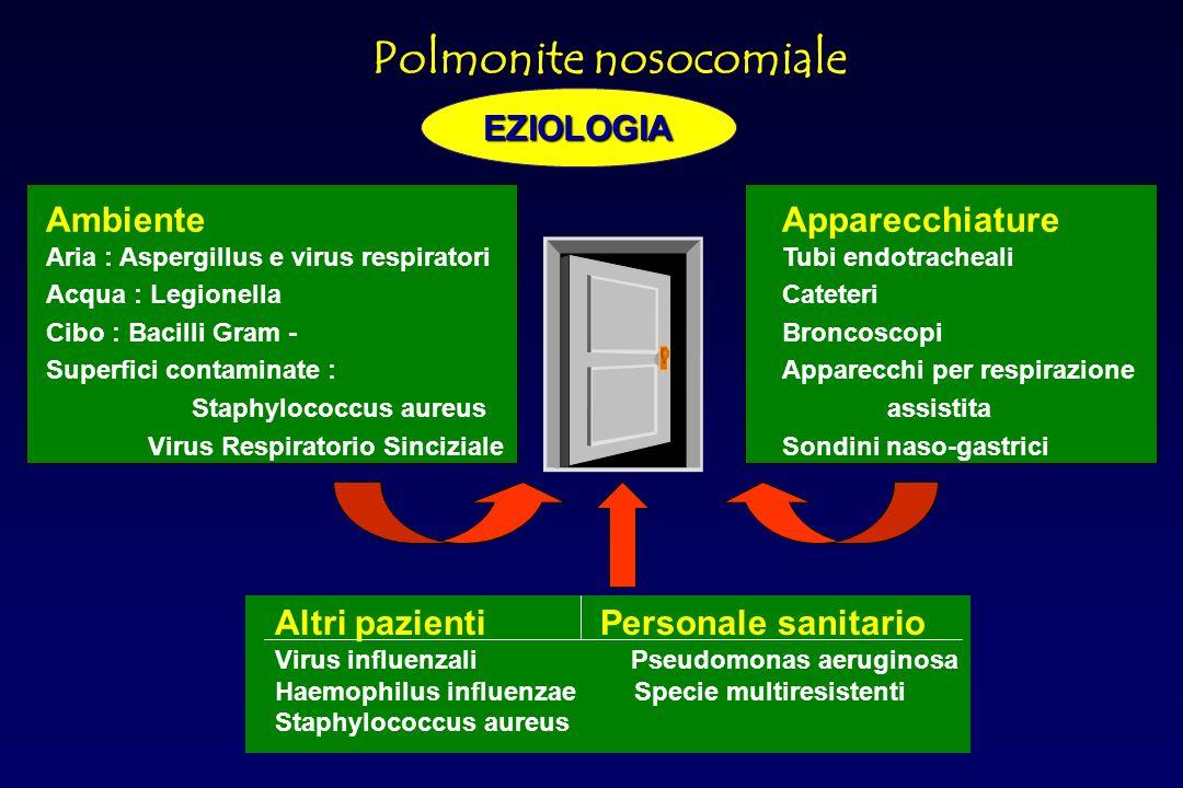 Acinetobacter spp Pseudomonas.aerug Miceti Virus respiratori Altri Polimicrobiche Klebsiella spp.