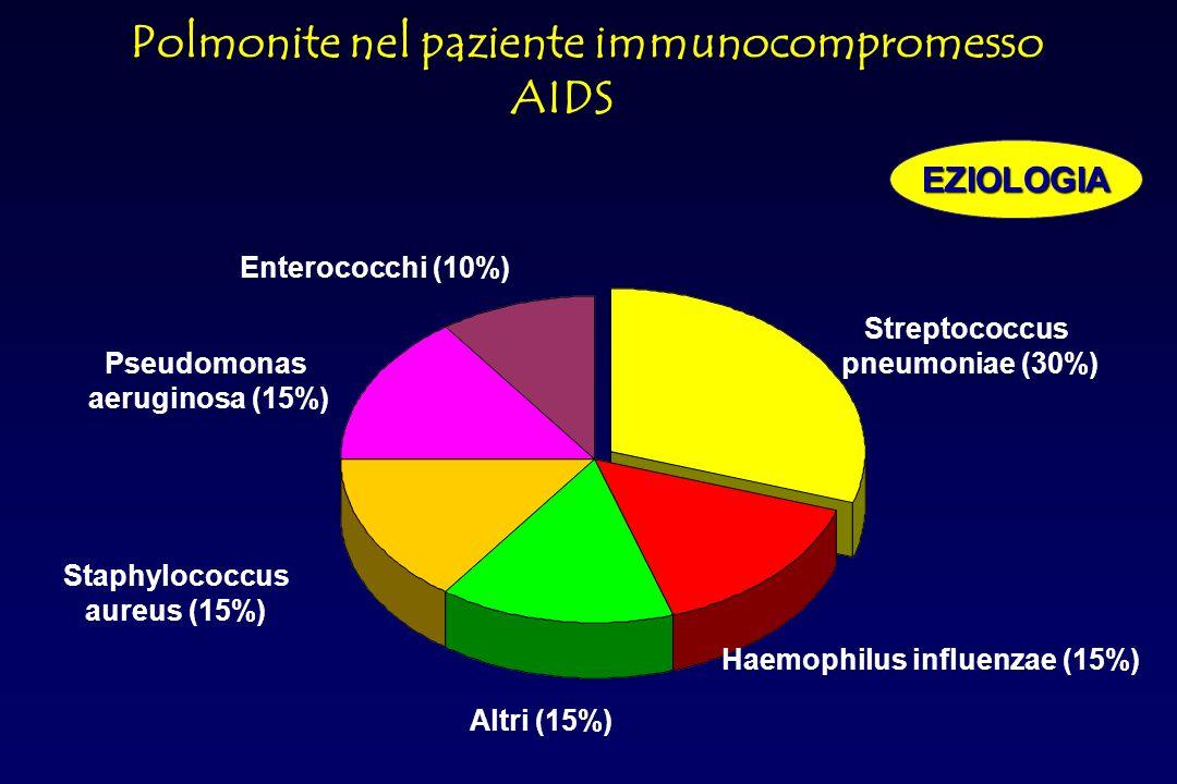 Pneumocisti jerovecii (44,5%) Batteri (25%) TBC (12,3%) Aspecifiche interstiziali (6,1%) Pneumocisti carinii+TBC (4,6%) Citomegalovirus(3%) Pneumocisti carinii+criptococcus (1,5%) Candida (1,5%) Sarcoma di Kaposi (1,5%) Polmonite nel paziente immunocompromesso AIDSEZIOLOGIA
