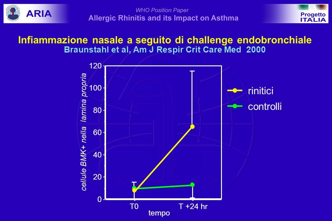 0 20 40 60 80 100 120 cellule BMK+ nella lamina propria T0T +24 hr tempo controlli rinitici Infiammazione nasale a seguito di challenge endobronchiale