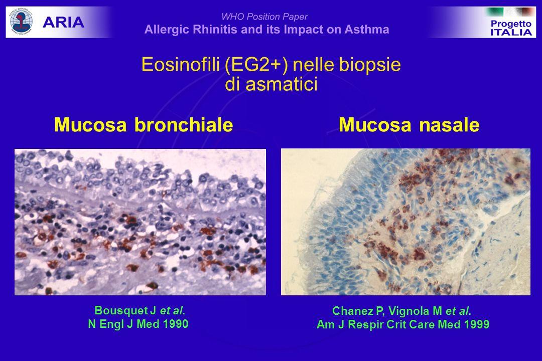 Eosinofili / mm2 %vasi ICAM+ 0 20 40 60 80 100 120 T0T +24 hr tempo 140 0 20 40 60 80 100 120 vasi ICAM+ T0T +24 hr tempo controlli rinitici cellule BMK+ nella lamina propria Infiammazione bronchiale a seguito di challenge nasale Braunstahl et al, J Allergy Clin Immunol 2001