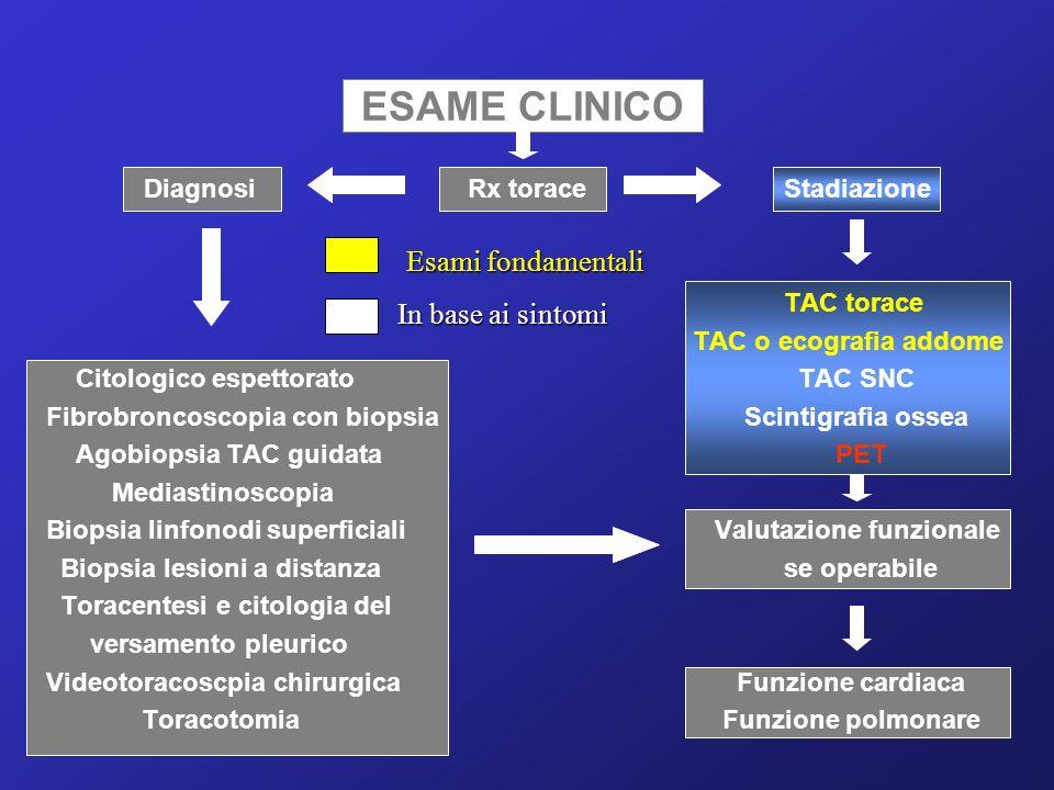 Importanti momenti decisionali nella gestione iniziale del malato con Carcinoma Polmonare Scelta del percorso diagnostico Valutazione degli esami clinici Determinazione dello stadio clinico Indicazione al trattamento elettivo Diagnosi e stadiazione del tumore del polmone