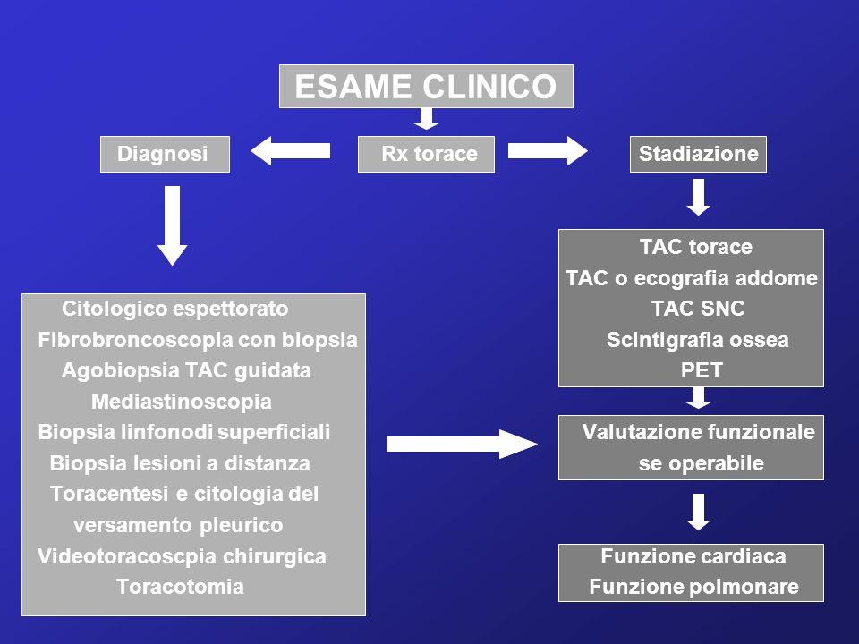 ESAME CLINICO DiagnosiRx toraceStadiazione TAC torace TAC o ecografia addome Citologico espettorato TAC SNC Fibrobroncoscopia con biopsia Scintigrafia