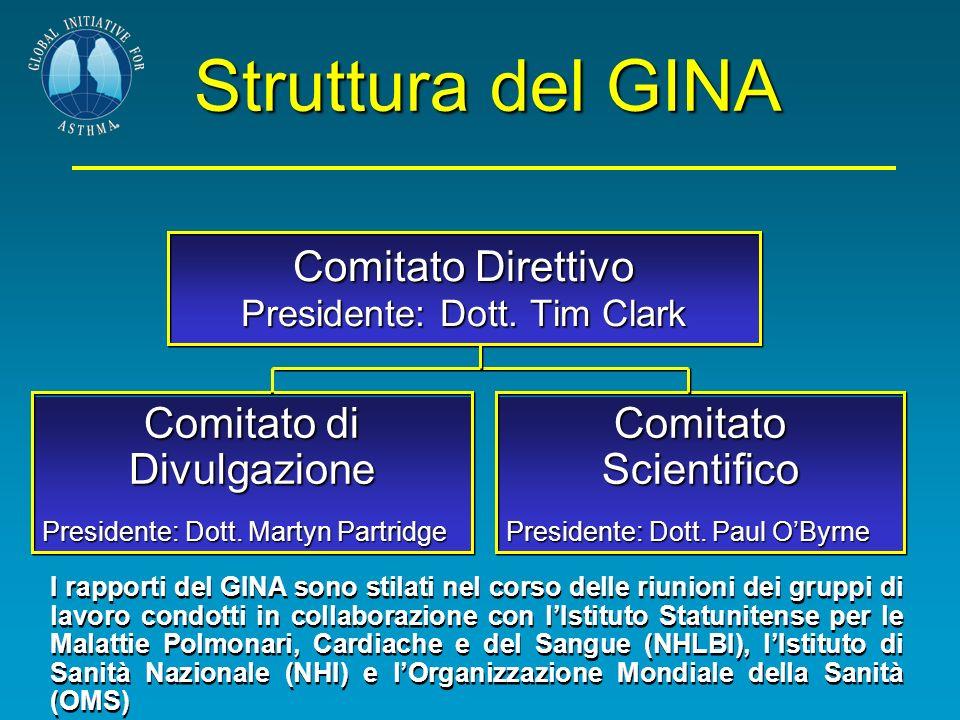 Comitato Direttivo Presidente: Dott. Tim Clark Comitato di Divulgazione Presidente: Dott. Martyn Partridge Presidente: Dott. Martyn Partridge Struttur