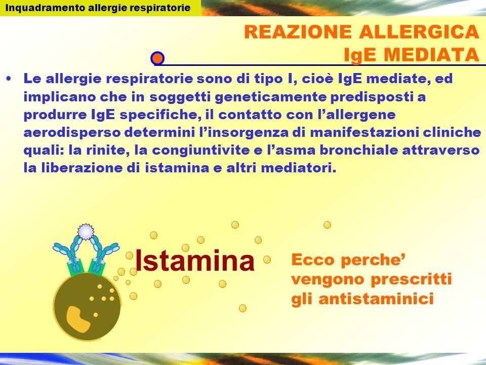Istamina Ecco perche vengono prescritti gli antistaminici REAZIONE ALLERGICA IgE MEDIATA Le allergie respiratorie sono di tipo I, cioè IgE mediate, ed