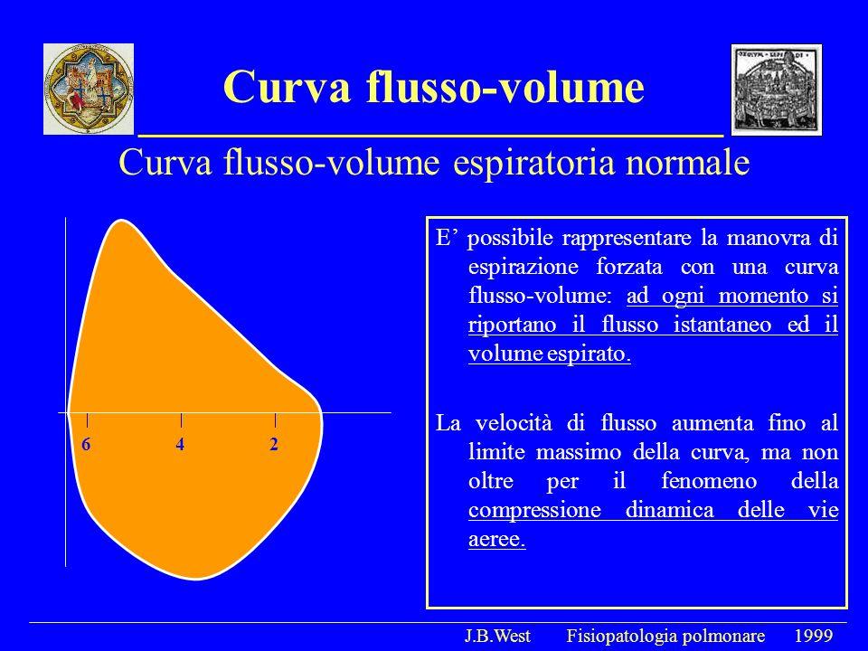 Curva flusso-volume E possibile rappresentare la manovra di espirazione forzata con una curva flusso-volume: ad ogni momento si riportano il flusso is