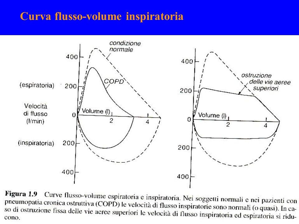 Curva flusso-volume inspiratoria