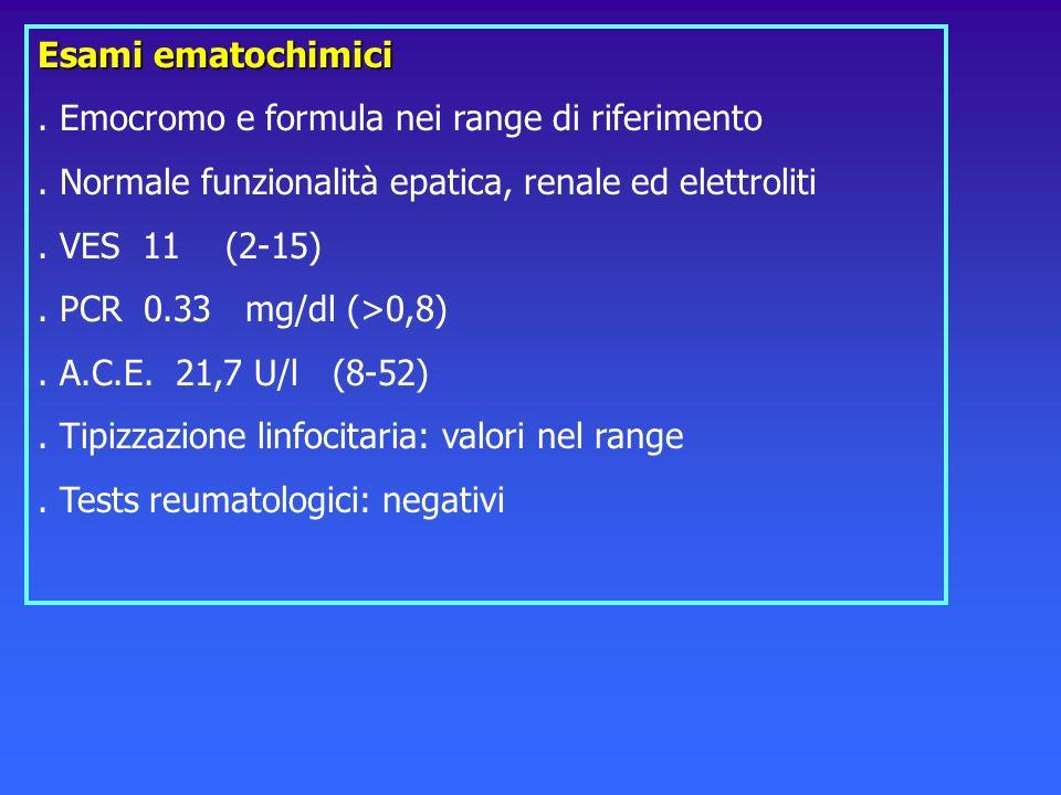 Esami ematochimici. Emocromo e formula nei range di riferimento. Normale funzionalità epatica, renale ed elettroliti. VES 11 (2-15). PCR 0.33 mg/dl (>