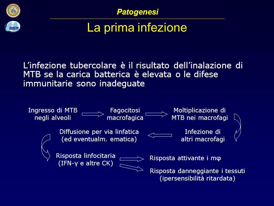 La prima infezione Patogenesi Linfezione tubercolare è il risultato dellinalazione di MTB se la carica batterica è elevata o le difese immunitarie son
