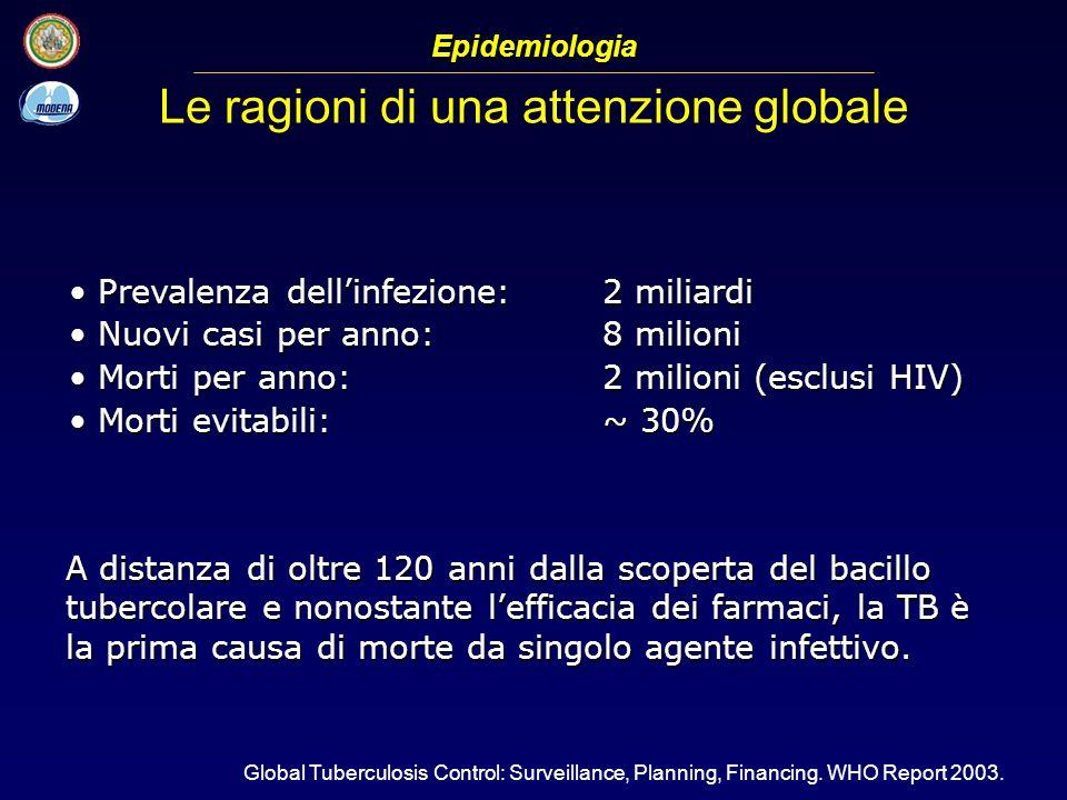 Prevalenza dellinfezione:2 miliardi Prevalenza dellinfezione:2 miliardi Nuovi casi per anno:8 milioni Nuovi casi per anno:8 milioni Morti per anno:2 m