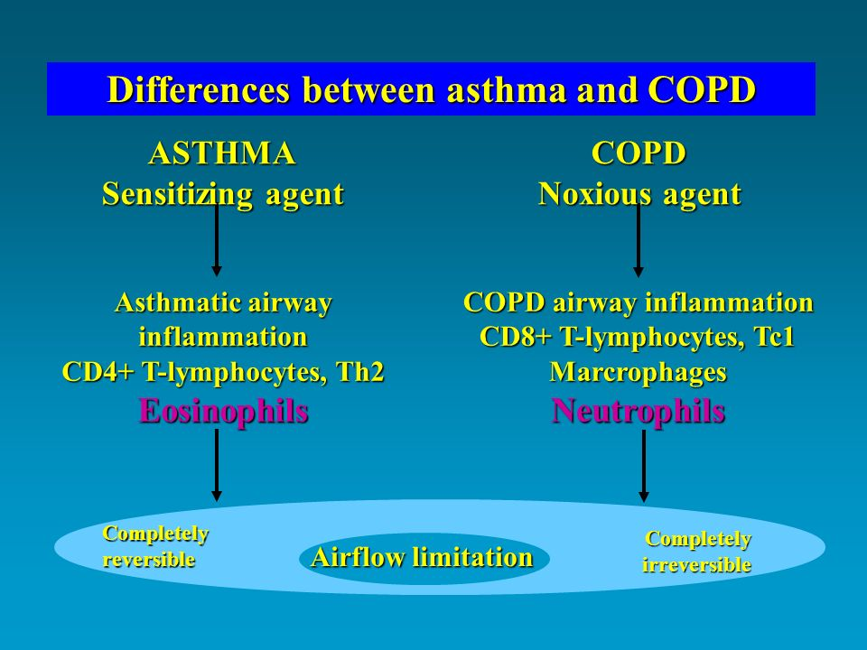 W. Busse and R. Lemanske. Immunology of asthma NEJM 2001: 344:350 Th1 and Th2 balance