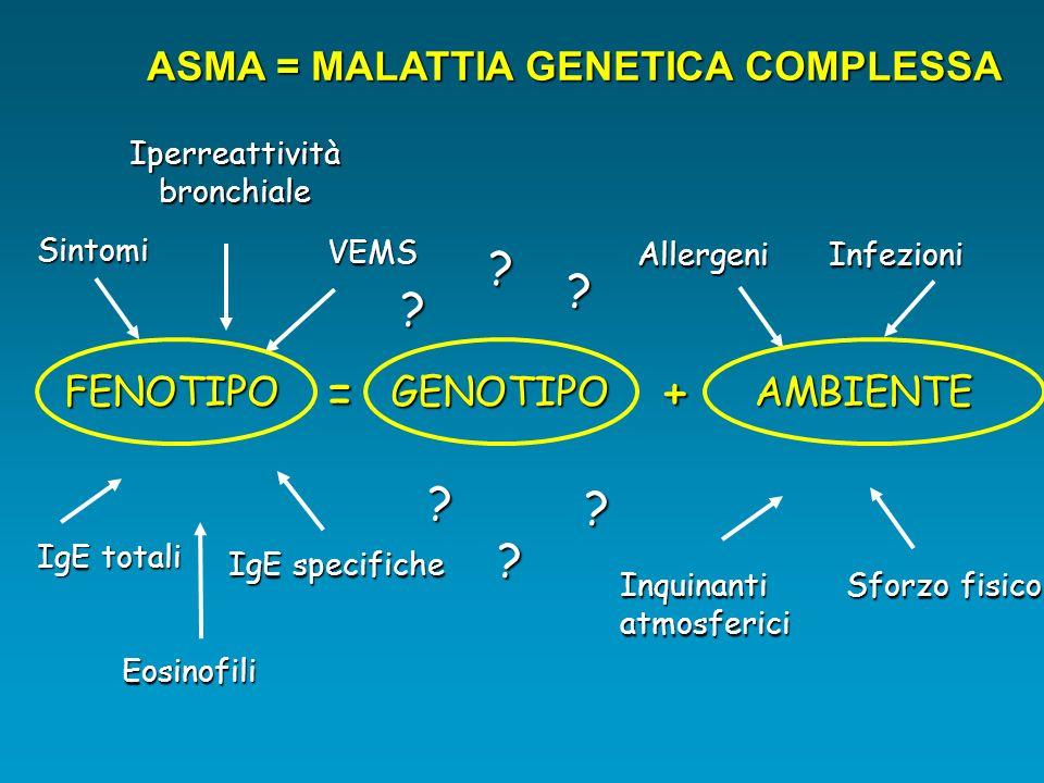 ASMA = MALATTIA GENETICA COMPLESSA GENOTIPO AMBIENTE AMBIENTE FENOTIPO = + ? ? ? ? ? ? IgE specifiche Iperreattivitàbronchiale Sintomi IgE totali Inqu