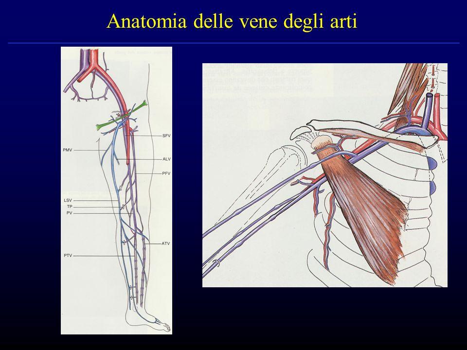TVP – metodiche diagnostiche Eco-color-doppler Angiografia (flebografia) TAC, RMN Scintigrafia con fibrinogeno marcato Pletismografia Termografia