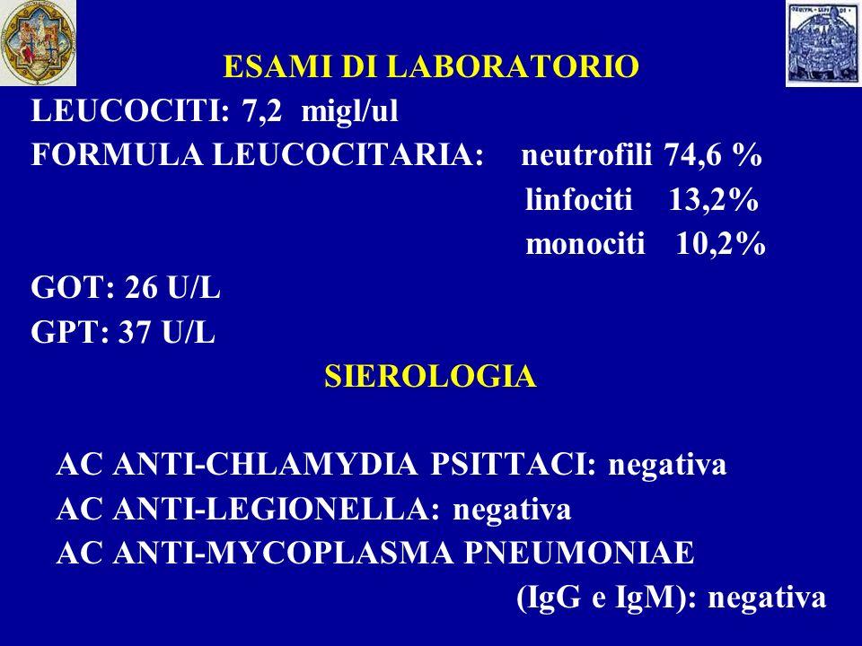 RX TORACE: Addensamento parenchimale nel lobo medio TERAPIA: macrolide per 10 giorni