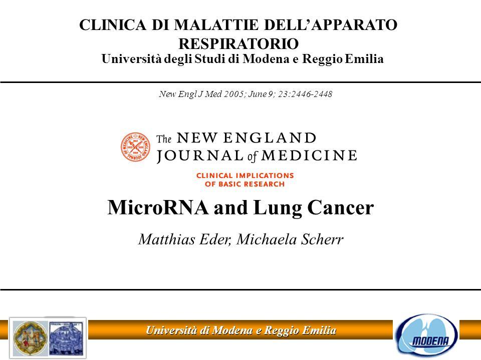 Analisi della espressione di let-7 nel tumore polmonare Northen blot in linee cellulari di neoplasie polmonari Northen blot in neoplasie polmonari in vivo HNLEC = human normal lung epithelial cell lines 20 linee cellulari di neoplasia polmonare 5S rRNA = controllo Takamizawa J; Cancer Reesearch 2004; 64:3753-3756 Takamizawa J; Cancer Reesearch 2004; 64:3753-3756