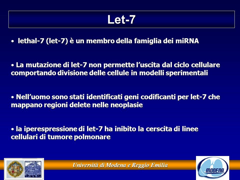 Università di Modena e Reggio Emilia Let-7 lethal-7 (let-7) è un membro della famiglia dei miRNA lethal-7 (let-7) è un membro della famiglia dei miRNA
