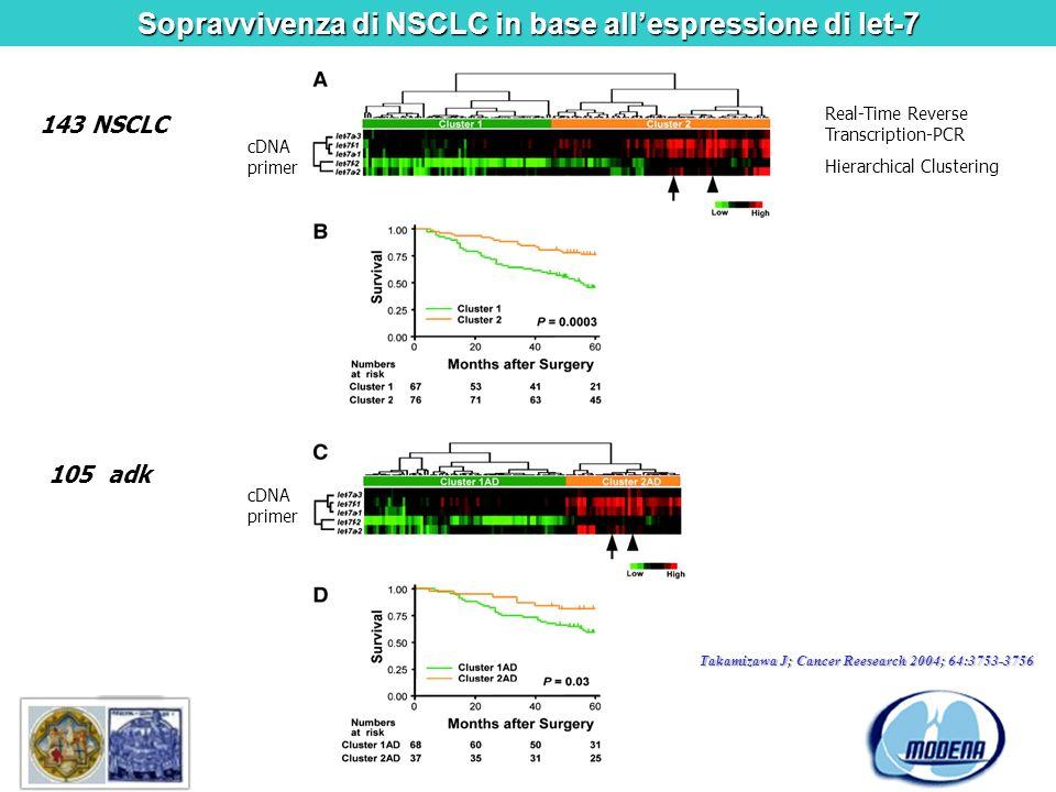 Sopravvivenza di NSCLC in base allespressione di let-7 143 NSCLC Real-Time Reverse Transcription-PCR Hierarchical Clustering cDNA primer 105 adk Takam