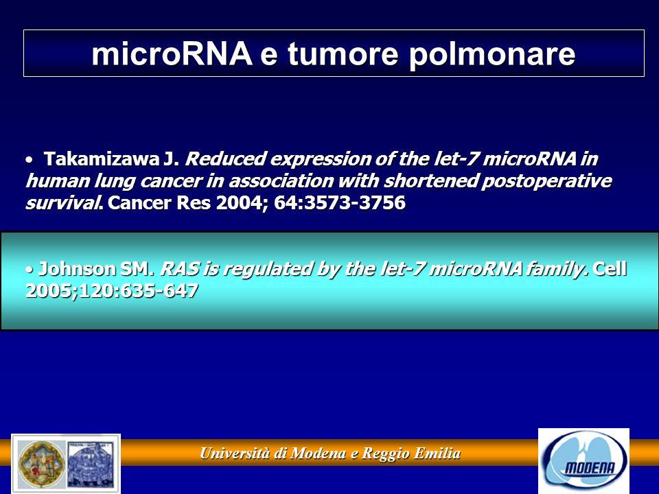 Università di Modena e Reggio Emilia microRNA e tumore polmonare Takamizawa J. Reduced expression of the let-7 microRNA in human lung cancer in associ
