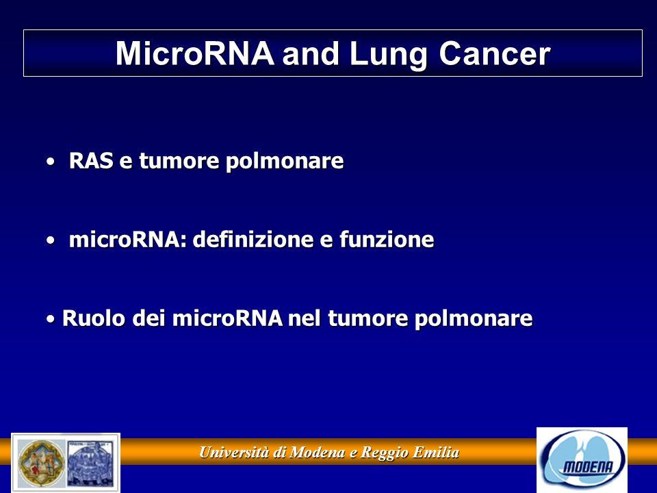 Università di Modena e Reggio Emilia MicroRNA and Lung Cancer RAS e tumore polmonare RAS e tumore polmonare microRNA: definizione e funzione microRNA: definizione e funzione Ruolo dei microRNA nel tumore polmonare Ruolo dei microRNA nel tumore polmonare