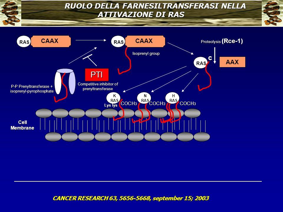 RUOLO DELLA FARNESILTRANSFERASI NELLA ATTIVAZIONE DI RAS CANCER RESEARCH 63, 5656-5668, september 15; 2003 Cell Membrane RAS CAAX RAS CAAX RAS c AAX C