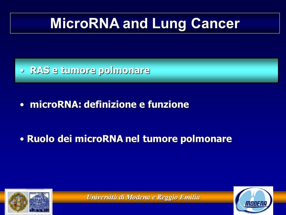 Università di Modena e Reggio Emilia microRNA e tumore polmonare Takamizawa J.