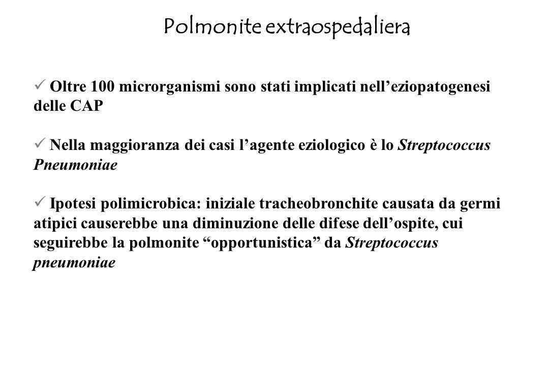 GenFebMarAprMagGiuLugAgoSetOttNovDic Virus respiratorio sinciziale Virus parainfluenzale 3 Stafilococchi Pneumococchi Mycoplasma Moraxella Legionella