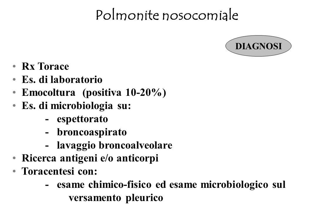 Polmonite nosocomiale Ricovero in Terapia Intensiva Rapido peggioramento radiografico, polmonite multilobare o escavazione di infiltrato polmonare Ins