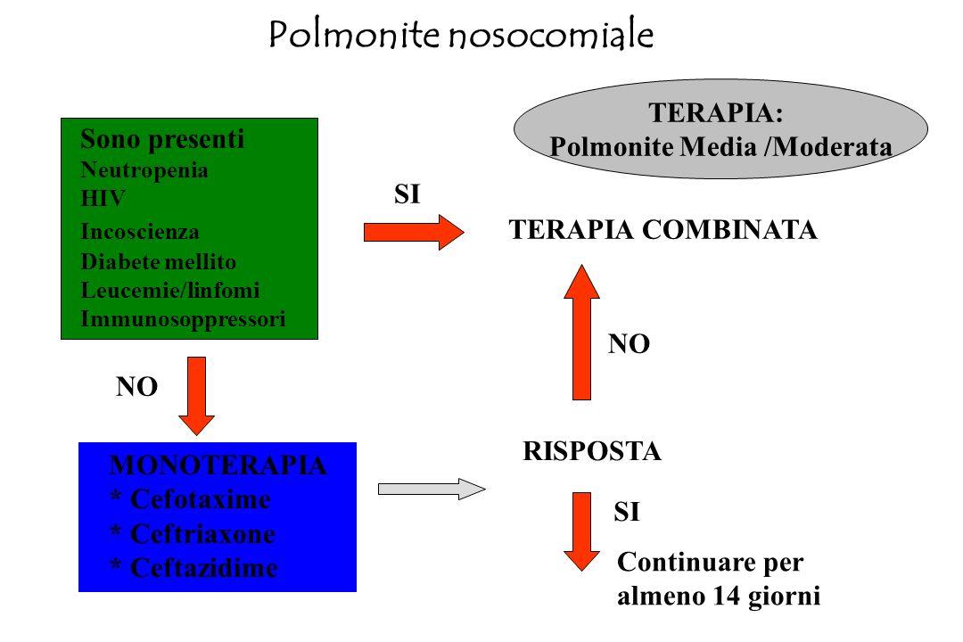 Polmonite nosocomiale Rx Torace Es. di laboratorio Emocoltura (positiva 10-20%) Es. di microbiologia su: - espettorato - broncoaspirato - lavaggio bro