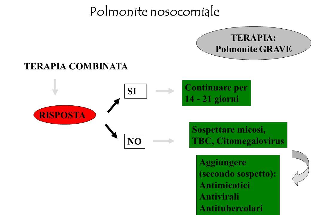 TERAPIA COMBINATA Nessun sospetto Cefalosporina III + aminoglicoside Carbapenemico (imipenem - meropenem) + aminoglicoside Ureidopenicillina + aminogl