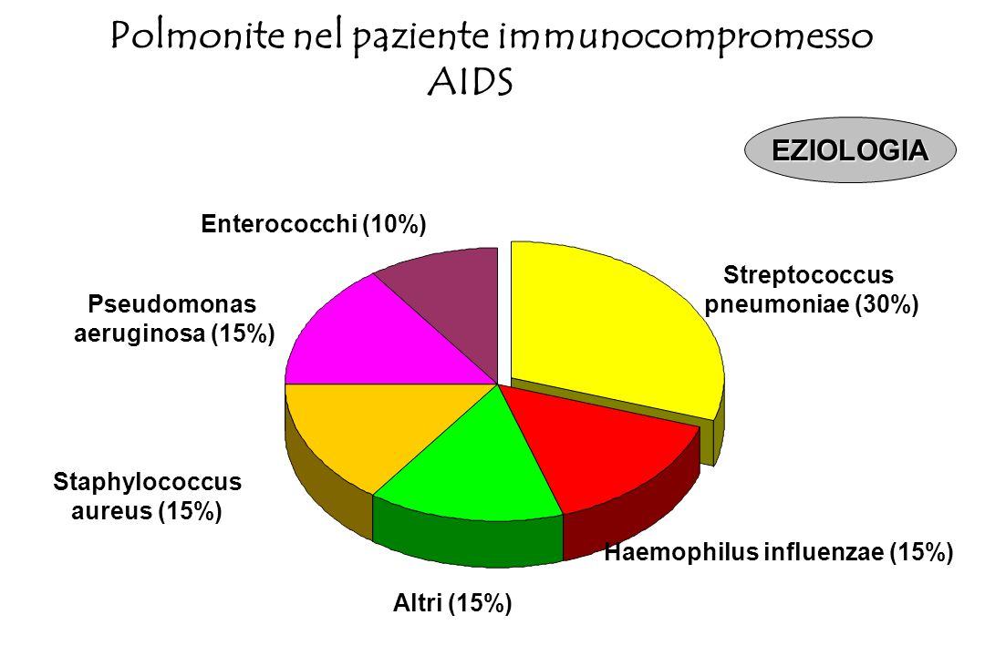 Pneumocisti carinii (44,5%) Batteri (25%) TBC (12,3%) Aspecifiche interstiziali (6,1%) Pneumocisti carinii+TBC (4,6%) Citomegalovirus(3%) Pneumocisti
