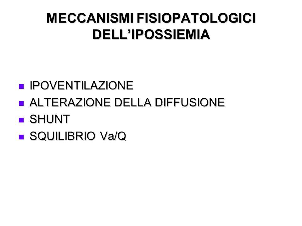 MECCANISMI FISIOPATOLOGICI DELLIPOSSIEMIA IPOVENTILAZIONE IPOVENTILAZIONE ALTERAZIONE DELLA DIFFUSIONE ALTERAZIONE DELLA DIFFUSIONE SHUNT SHUNT SQUILI