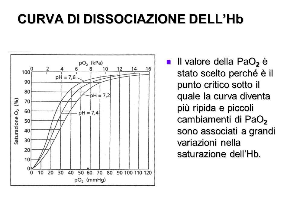 CURVA DI DISSOCIAZIONE DELLHb Il valore della PaO 2 è stato scelto perché è il punto critico sotto il quale la curva diventa più ripida e piccoli camb