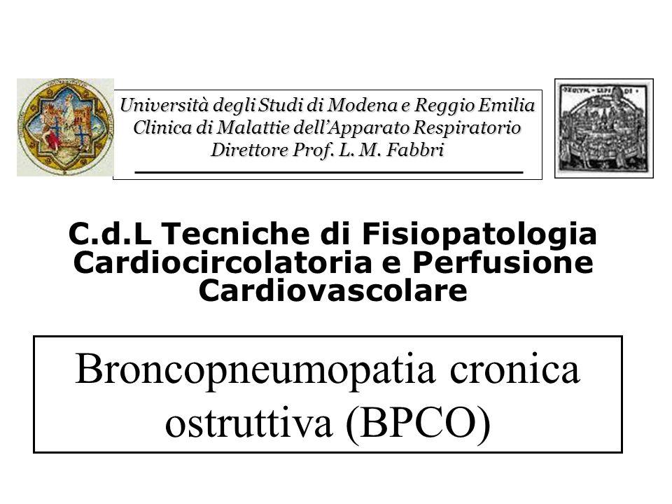 Università degli Studi di Modena e Reggio Emilia Clinica di Malattie dellApparato Respiratorio Direttore Prof.