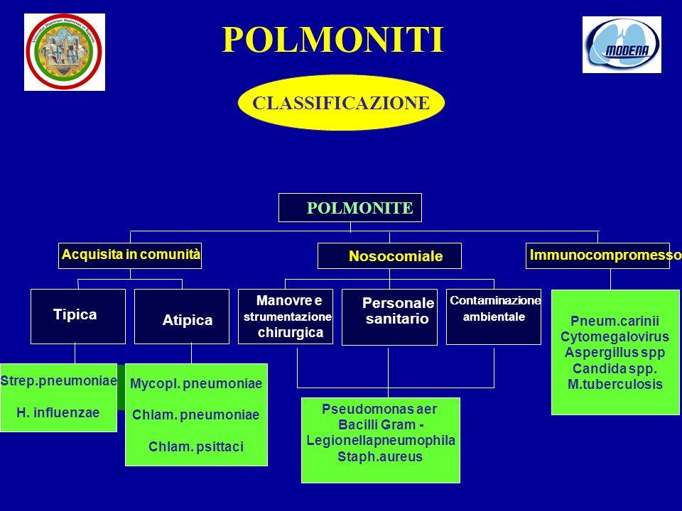 Atipica Acquisita in comunità Manovre e strumentazione chirurgica Personale sanitario Contaminazione ambientale Nosocomiale Immunocompromesso POLMONITE Strep.pneumoniae H.