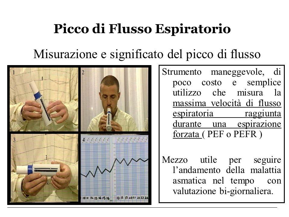 Picco di Flusso Espiratorio Misurazione e significato del picco di flusso Strumento maneggevole, di poco costo e semplice utilizzo che misura la massi