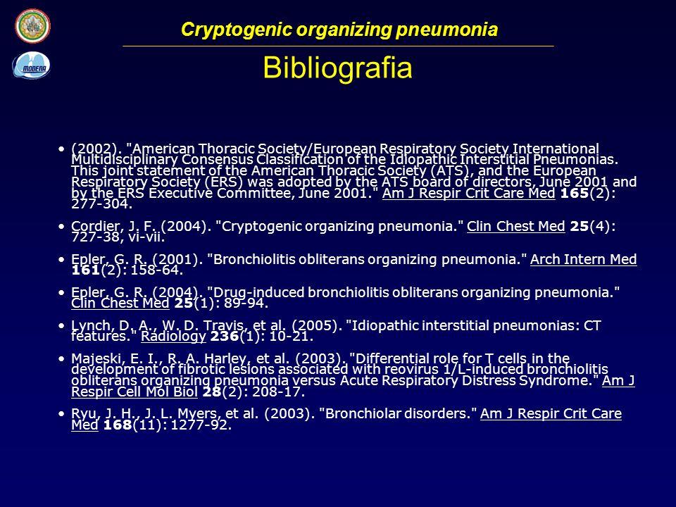 Bibliografia (2002).