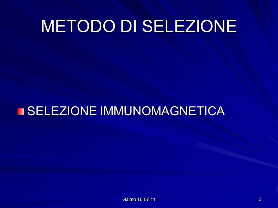 METODO DI SELEZIONE SELEZIONE IMMUNOMAGNETICA 3 Gaiato 16-07-11
