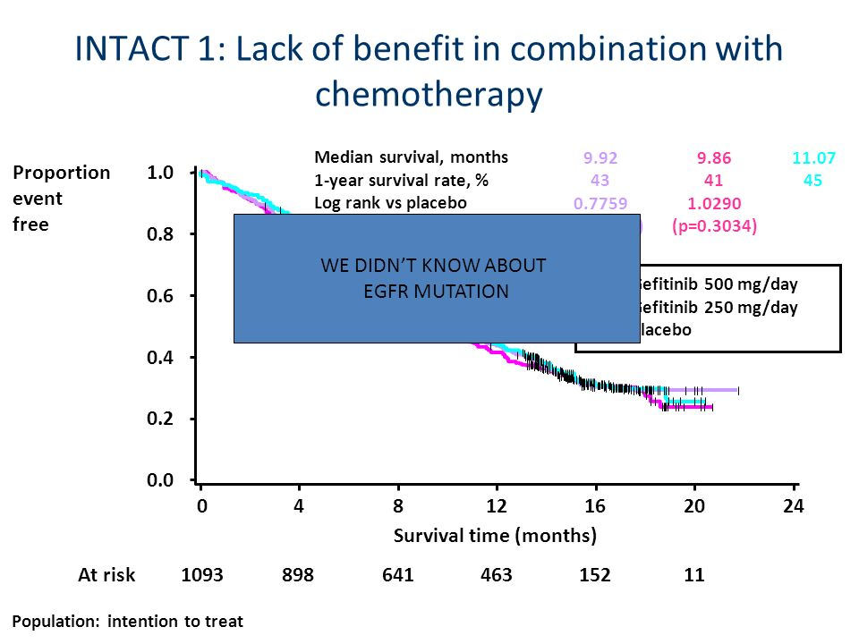 INTACT 1: Lack of benefit in combination with chemotherapy Population: intention to treat 0.0 0.2 0.4 0.6 0.8 1.0 Survival time (months) 04812162024 P