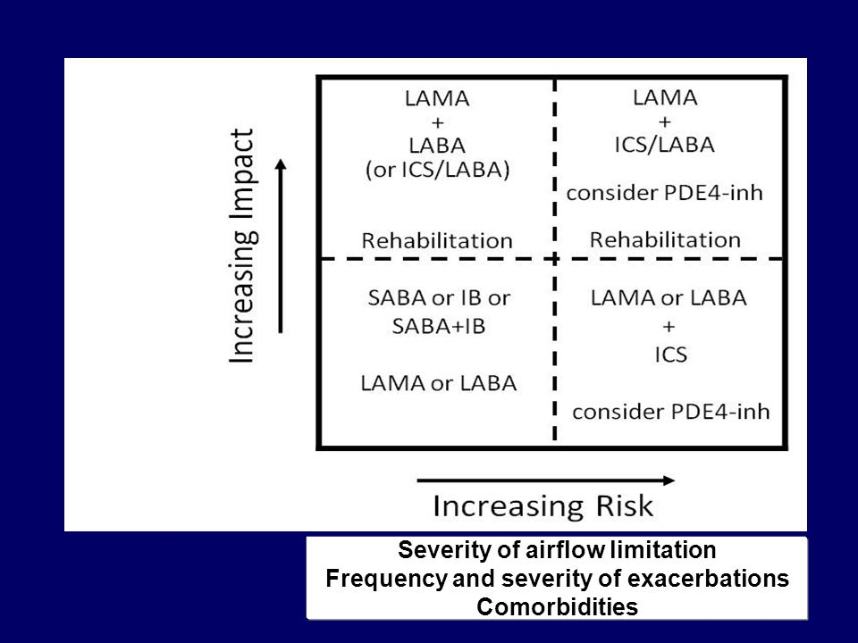 Severity of airflow limitation Frequency and severity of exacerbations Comorbidities