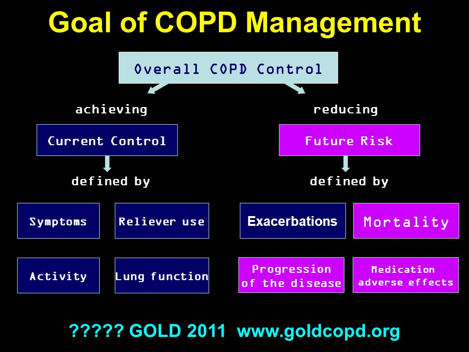 Goal of COPD Management Overall COPD Control Current ControlFuture Risk Symptoms Activity Reliever use Lung function Exacerbations Progression of the