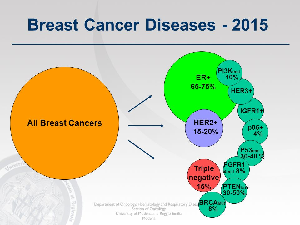 Breast Cancer Diseases - 2015 All Breast Cancers ER+ 65-75% HER2+ 15-20% Triple negative 15% HER3+ IGFR1+ p95+ 4% P53 mut 30-40 % FGFR1 Ampl 8% PTEN l