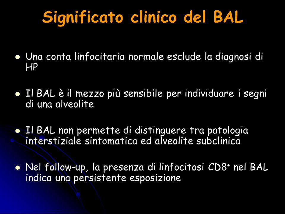 Significato clinico del BAL Una conta linfocitaria normale esclude la diagnosi di HP Il BAL è il mezzo più sensibile per individuare i segni di una al