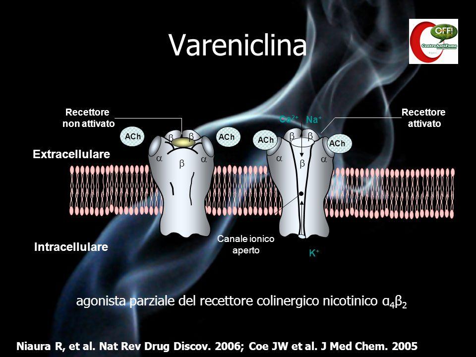 Vareniclina agonista parziale del recettore colinergico nicotinico α 4 β 2 Niaura R, et al. Nat Rev Drug Discov. 2006; Coe JW et al. J Med Chem. 2005
