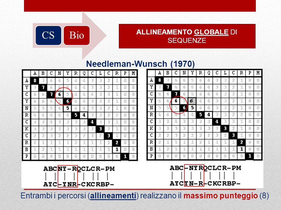 BioCS ALLINEAMENTO GLOBALE DI SEQUENZE Needleman-Wunsch (1970) Entrambi i percorsi (allineamenti) realizzano il massimo punteggio (8)